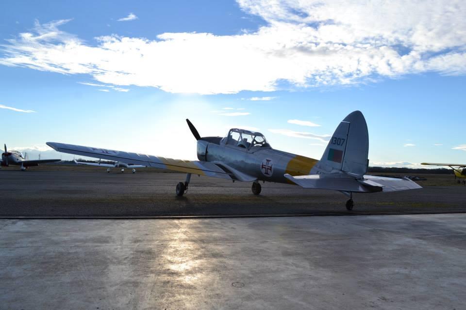 De Havilland DHC-1 PT